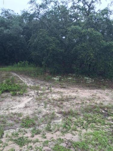 8491 N Sussex Drive, Dunnellon, FL - USA (photo 1)