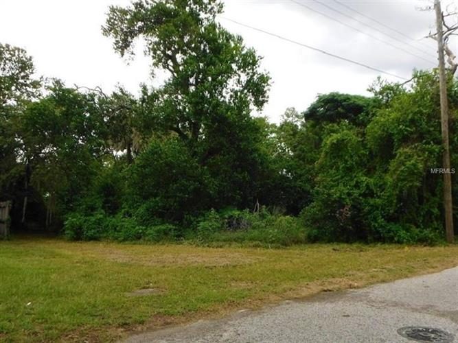 4320 E Grove View Ave, Tampa, FL - USA (photo 1)