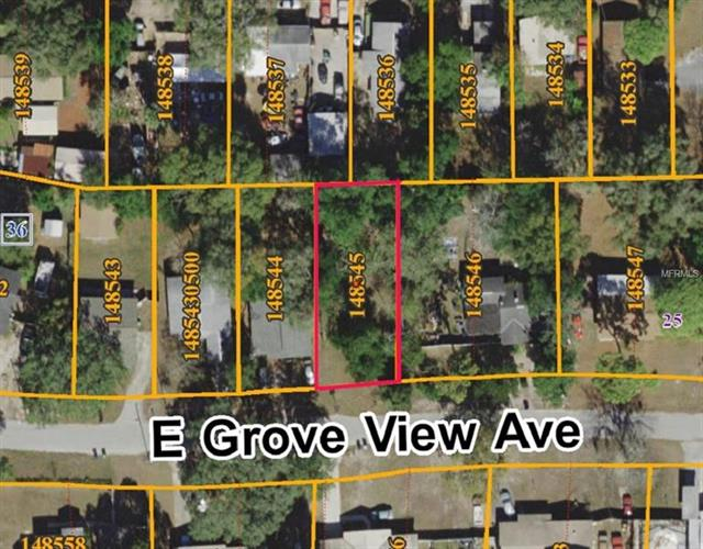 4320 E Grove View Ave, Tampa, FL - USA (photo 3)