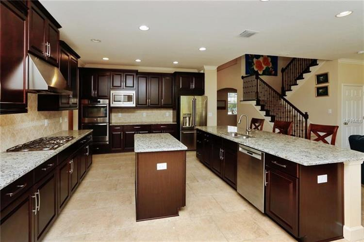 26858 Evergreen Chase Dr, Wesley Chapel, FL - USA (photo 4)