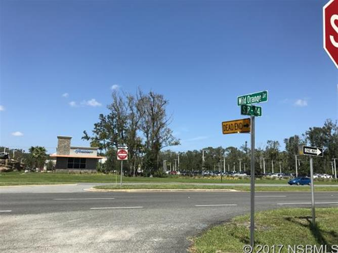 0 Canal St, New Smyrna Beach, FL - USA (photo 4)