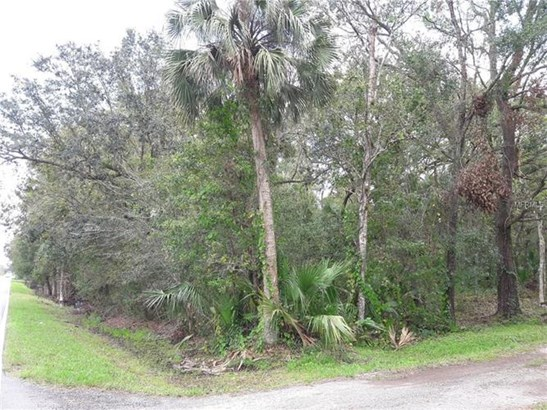 5818 Old Tampa Hwy, Davenport, FL - USA (photo 1)