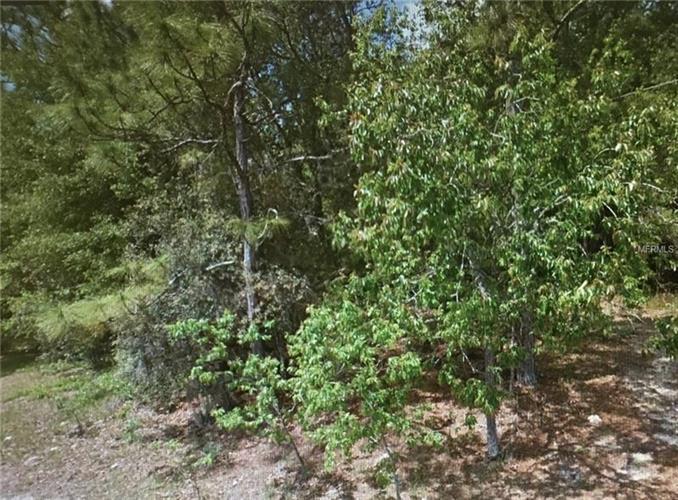 Tall Pines Dr, Dade City, FL - USA (photo 1)