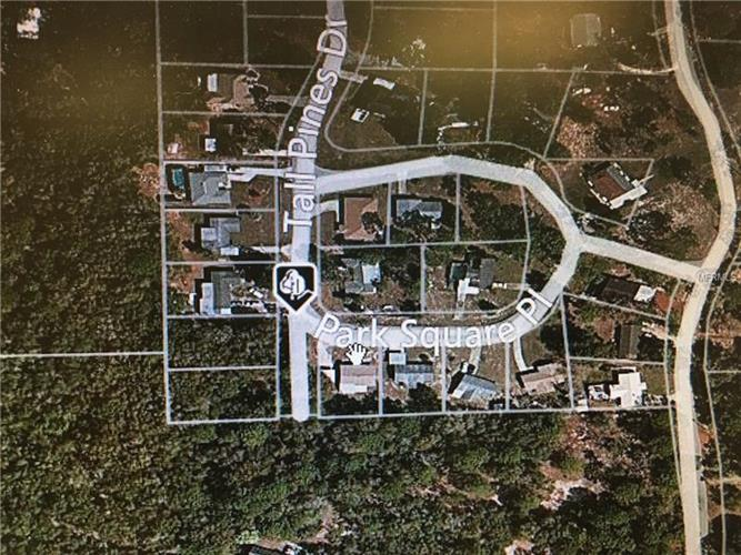 Tall Pines Dr, Dade City, FL - USA (photo 2)