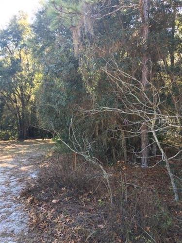Tall Pines Dr, Dade City, FL - USA (photo 5)