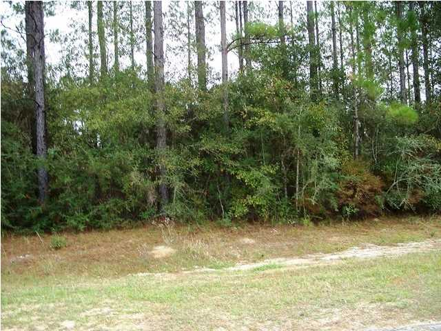 0 Old Citronelle N Highway #53, Chunchula, AL - USA (photo 1)