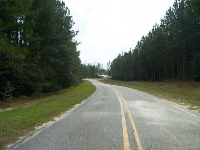 0 Old Citronelle N Highway #53, Chunchula, AL - USA (photo 2)