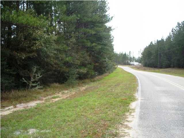 0 Old Citronelle N Highway #53, Chunchula, AL - USA (photo 3)