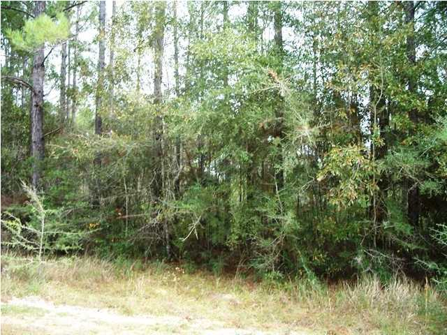 0 Old Citronelle N Highway #53, Chunchula, AL - USA (photo 5)
