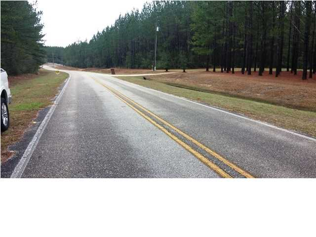 0 Old Citronelle Highway #54, Chunchula, AL - USA (photo 4)