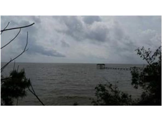 0 Dauphin Island Parkway #11, Mobile, AL - USA (photo 2)