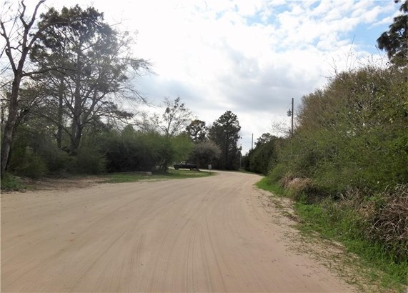 22752 Doc Mcduffie Road, Foley, AL - USA (photo 2)