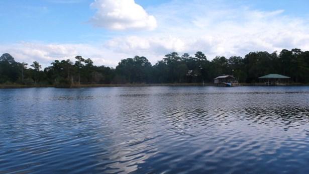 0 Irene Early Ln, Magnolia Springs, AL - USA (photo 3)