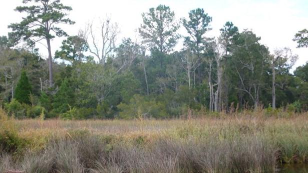 0 Irene Early Ln, Magnolia Springs, AL - USA (photo 4)