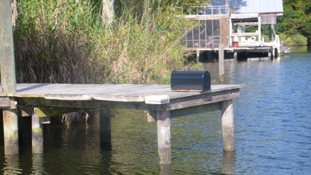 0 Irene Early Ln, Magnolia Springs, AL - USA (photo 5)