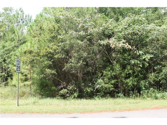 17975 River Road, Summerdale, AL - USA (photo 2)