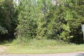 17975 River Road, Summerdale, AL - USA (photo 3)