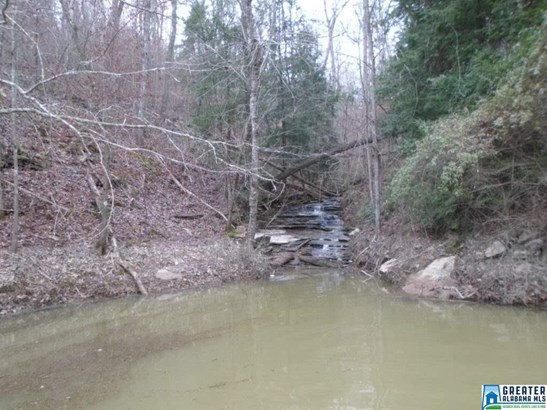 Acreage - ARLEY, AL (photo 2)
