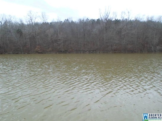 Acreage - ARLEY, AL (photo 4)