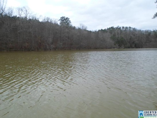 Acreage - ARLEY, AL (photo 5)