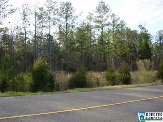 Acreage - TALLADEGA, AL (photo 1)
