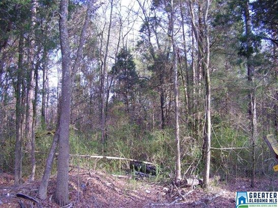 Acreage - TALLADEGA, AL (photo 3)