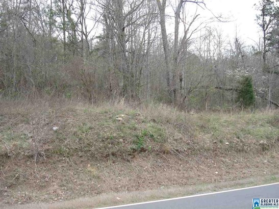 Acreage - BLOUNTSVILLE, AL (photo 2)