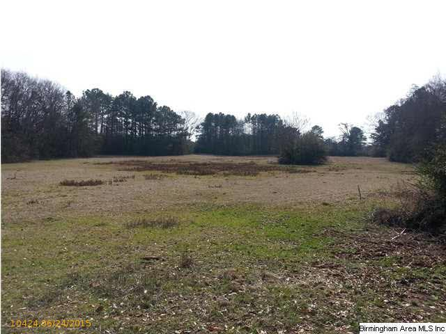 Acreage - CROPWELL, AL (photo 3)