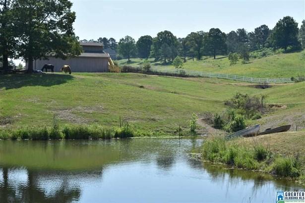 Farm - HELENA, AL (photo 4)
