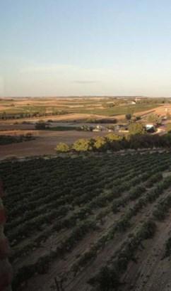 D.o. Ribera Del Duero - ESP (photo 3)