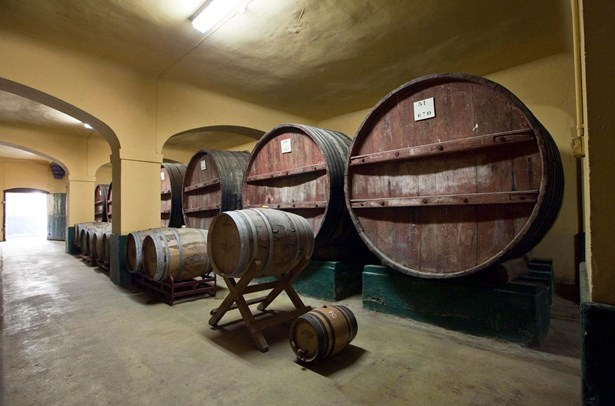 D.o.c. Rioja - ESP (photo 5)
