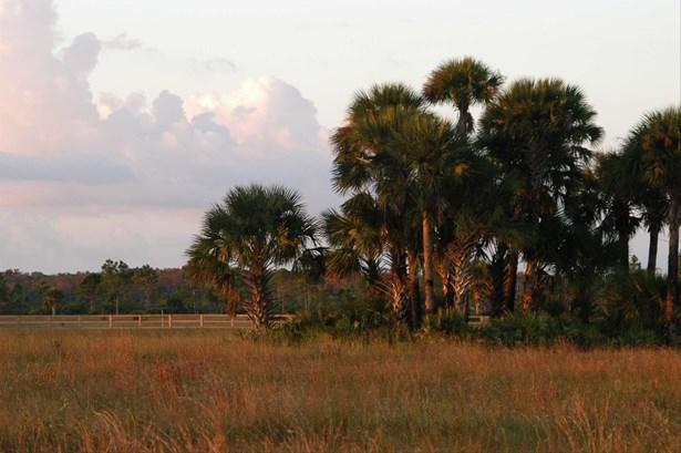 21555 State Road 60, Vero Beach, FL - USA (photo 2)