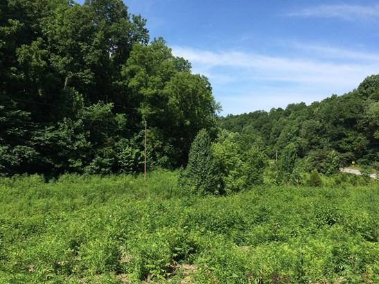 0 Mcbrides Branch Rd, Beechgrove, TN - USA (photo 2)
