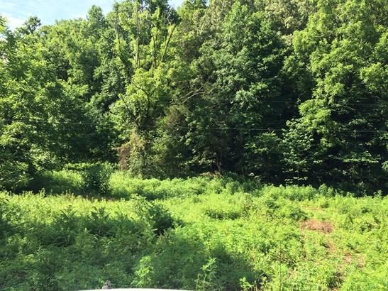 0 Mcbrides Branch Rd, Beechgrove, TN - USA (photo 3)
