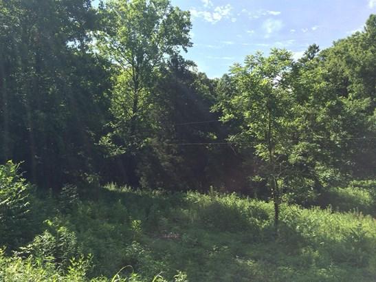 0 Mcbrides Branch Rd, Beechgrove, TN - USA (photo 4)