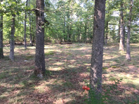 257 Railroad Bed Rd, Summertown, TN - USA (photo 4)