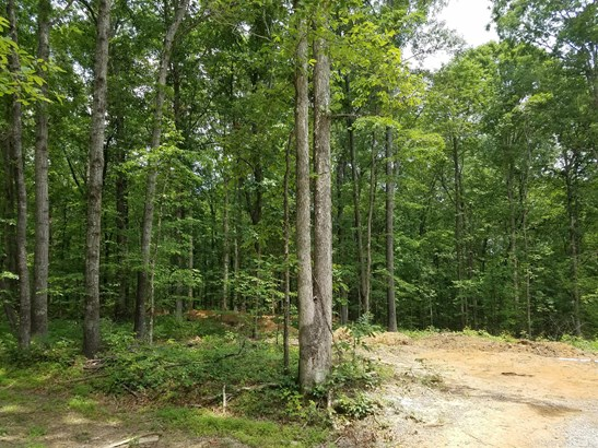 5892 Pinewood Rd, Franklin, TN - USA (photo 4)