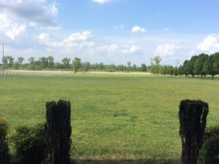 169 Eady Rd, Shelbyville, TN - USA (photo 2)
