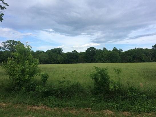 0 East Gum Rd, Murfreesboro, TN - USA (photo 3)