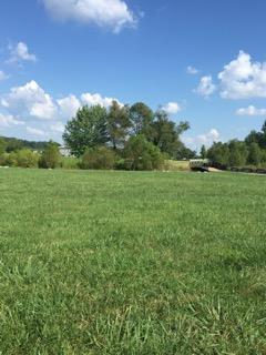 201 Creekside Dr, Lewisburg, TN - USA (photo 1)