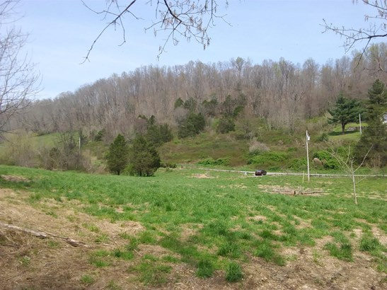 0 Cummings Hollow Rd, Woodbury, TN - USA (photo 5)