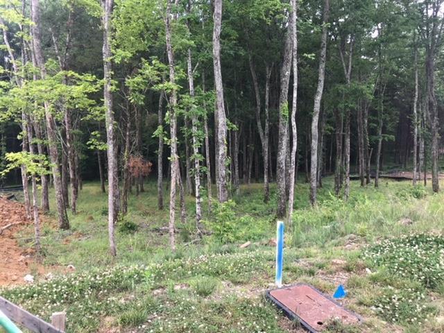 8633 Belladonna Dr, College Grove, TN - USA (photo 2)