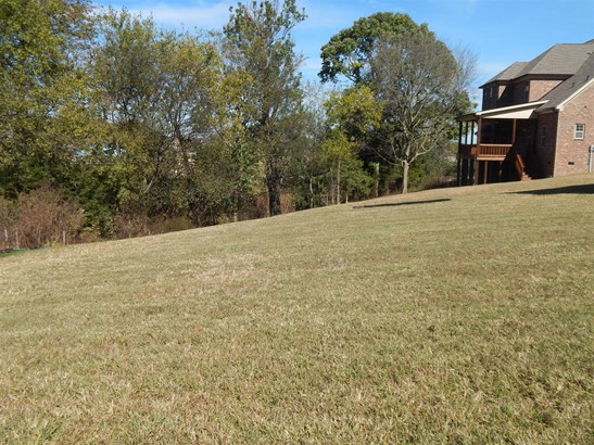 1024 Lawson Ln - Lot 204, Nolensville, TN - USA (photo 4)