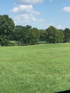 341 Creekside Dr, Lewisburg, TN - USA (photo 3)