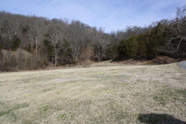 0 Lake Hollow Road Lot 3, Woodbury, TN - USA (photo 1)
