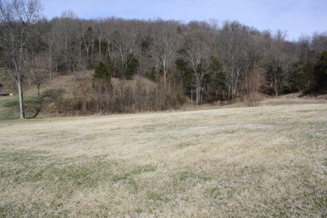 0 Lake Hollow Road Lot 3, Woodbury, TN - USA (photo 3)