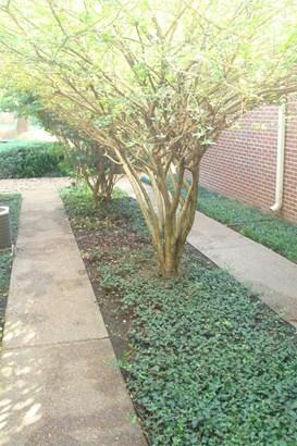 313 Calumet Trce, Murfreesboro, TN - USA (photo 4)