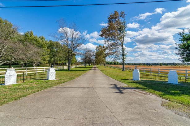 3124 Hwy 231 North, Shelbyville, TN - USA (photo 4)