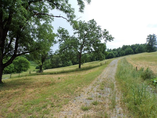 290 George Reagor Rd, Shelbyville, TN - USA (photo 3)