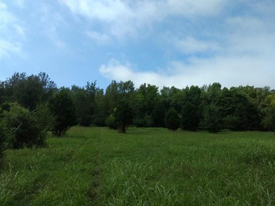 4063 Clovercroft, Franklin, TN - USA (photo 3)